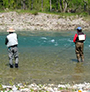 Fly Fishing in Magra River