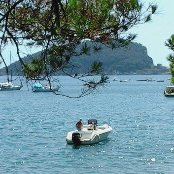 Isola di Palmaria